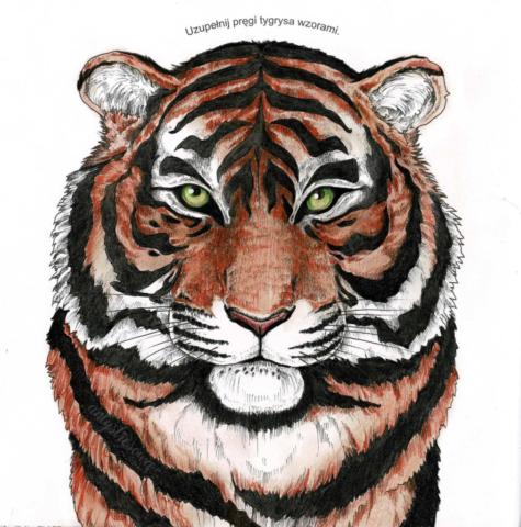 Tygrys - ekstremalne kolorowanie i wyszukiwanie