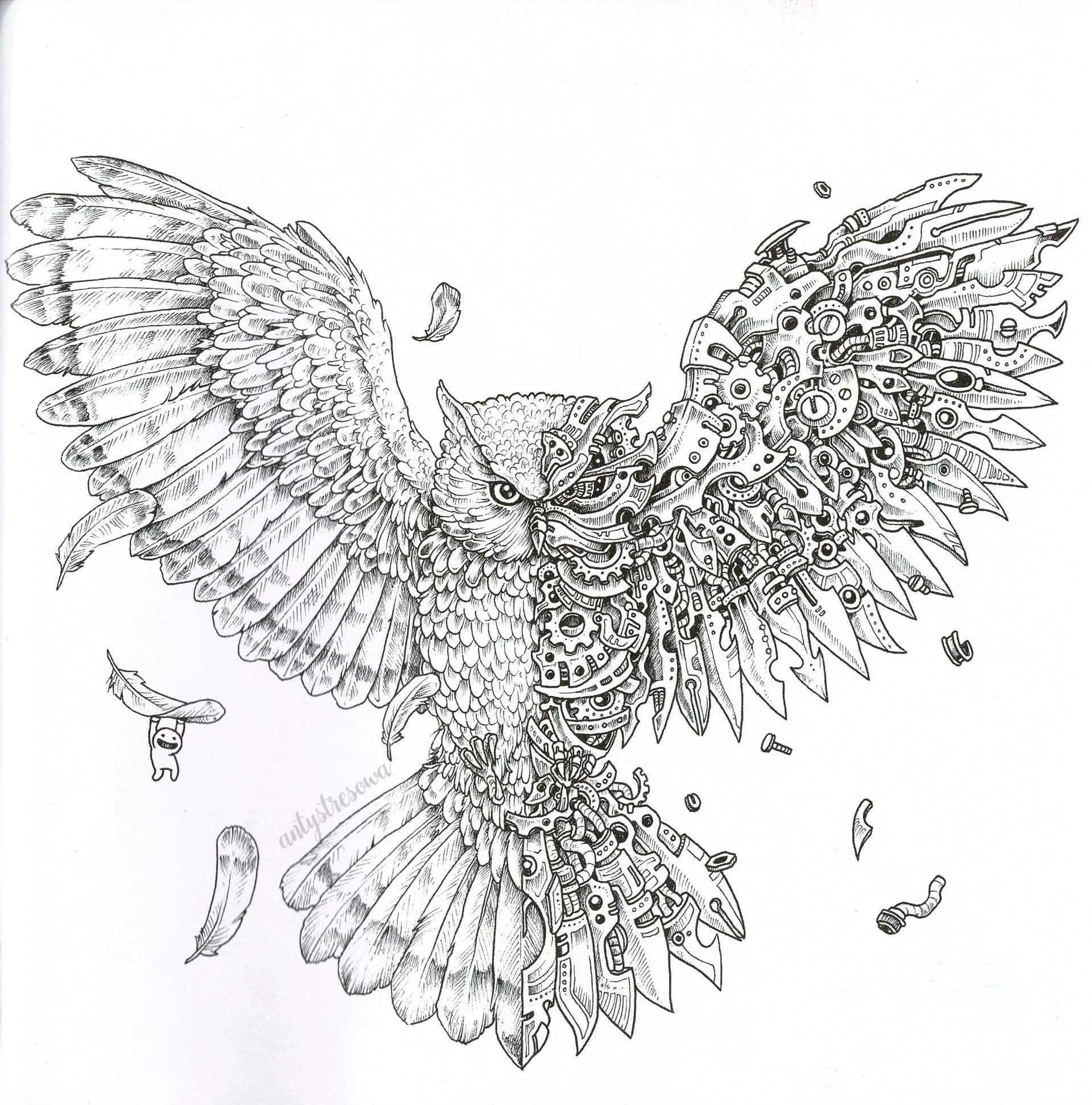 Mechaniczna sowa - Imagimorphia, Kerby Rosanes