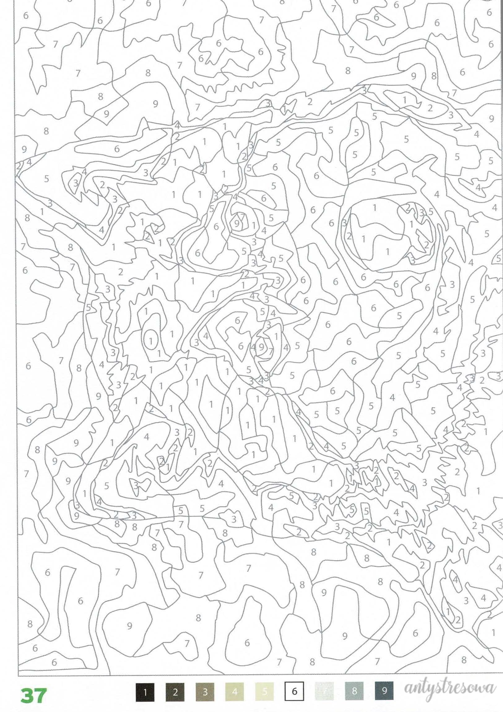 100 Coloriages mystéres - Jérémy Mariez, strona 27