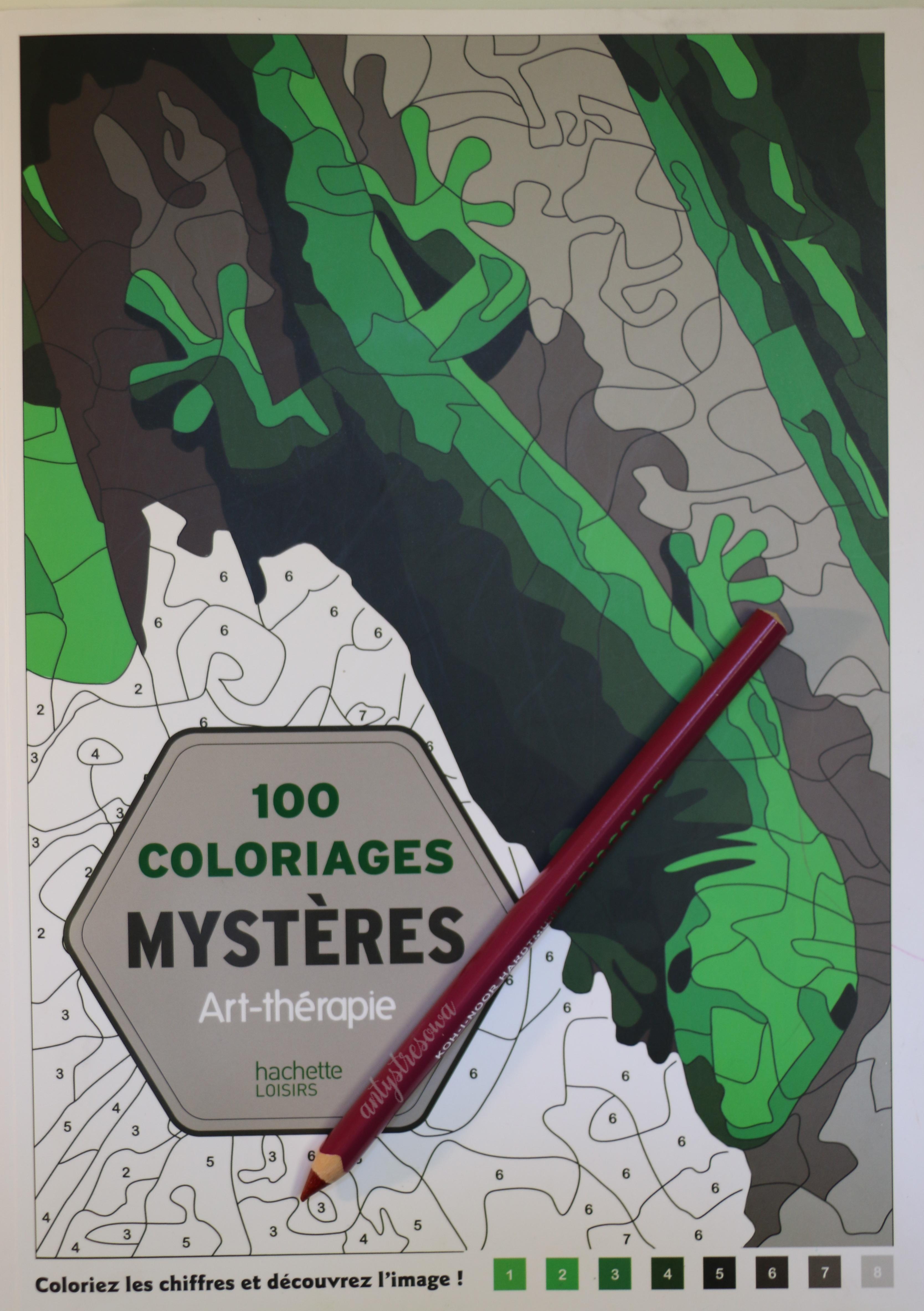 100 Coloriages mystéres