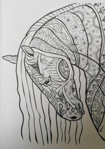 Koń z kolorowanki antystresowej.