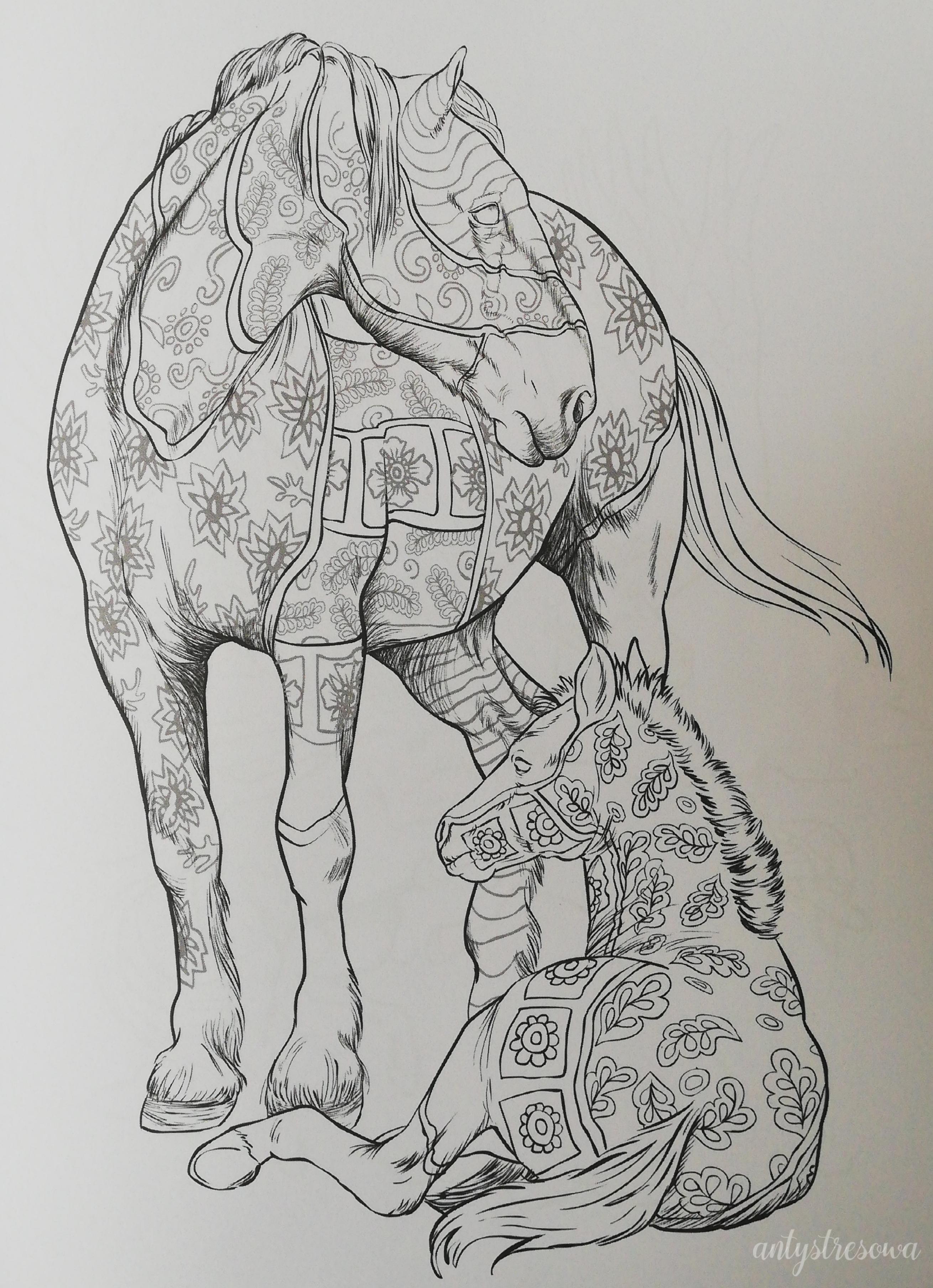 Para koni - kolorowanka.