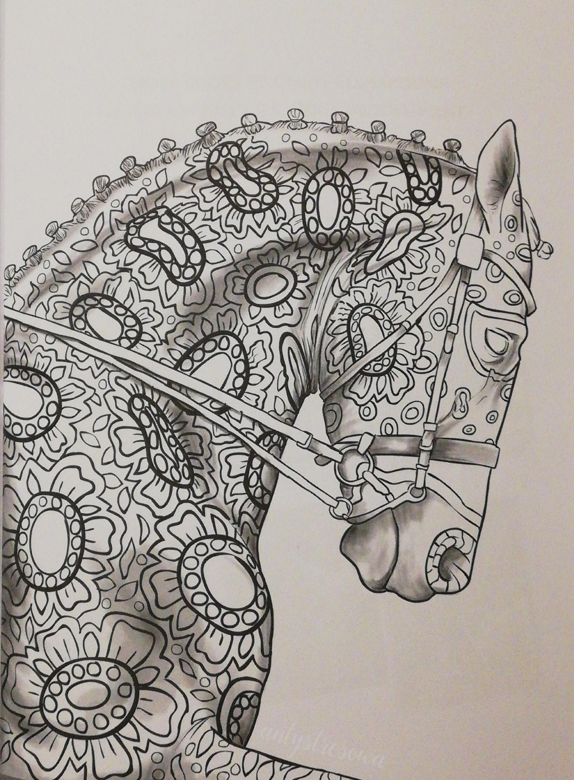 Cindy Elsharouni, The amazing world of horses grayscale