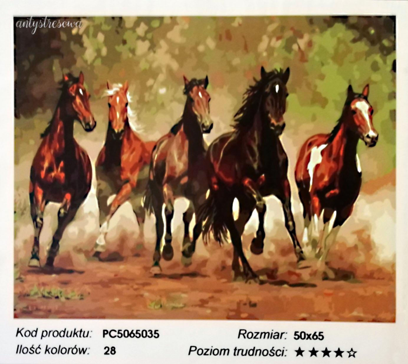 Malowanie numeryczne - obraz koni.