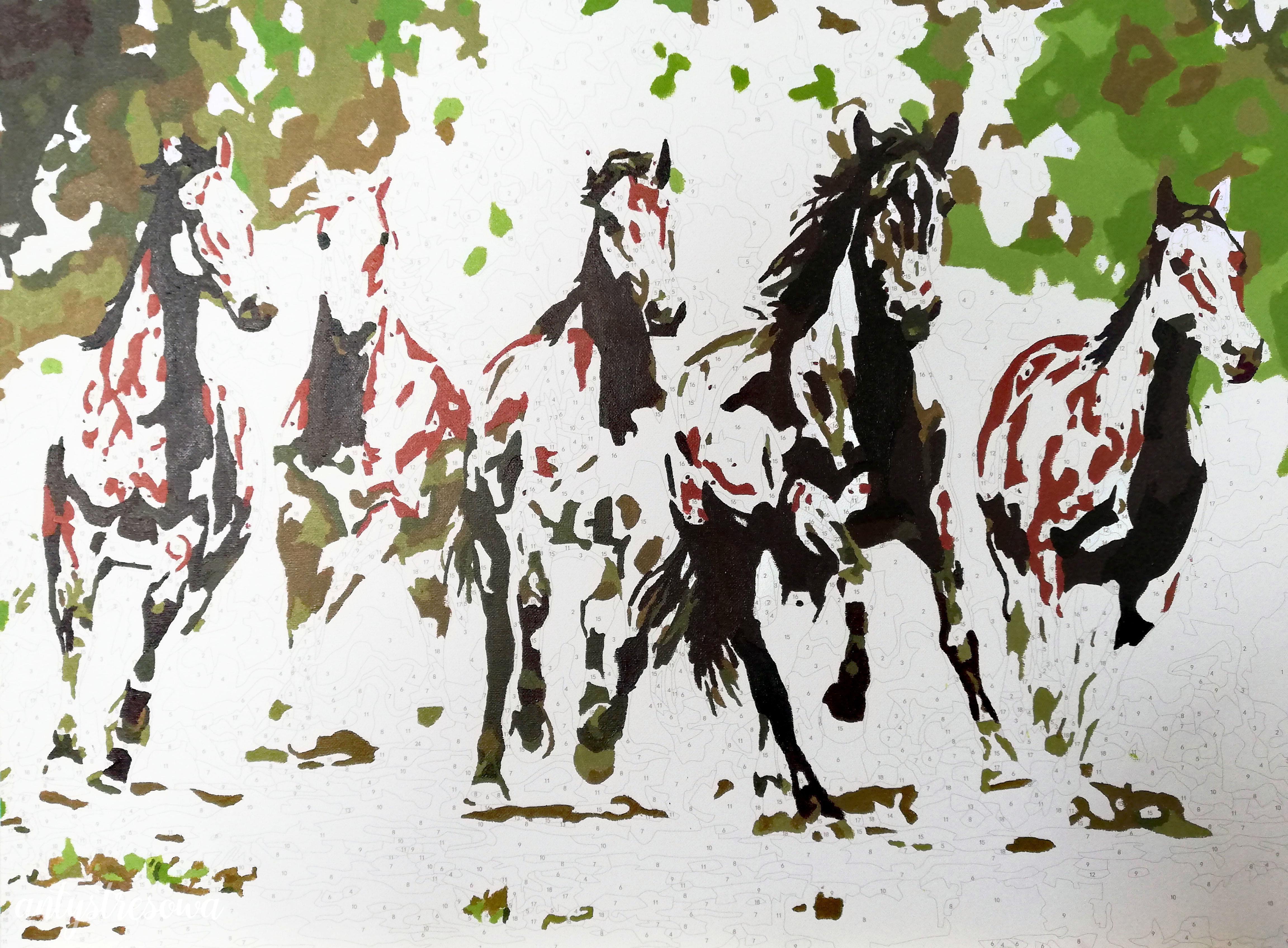 Konie - malowanie po numerach.