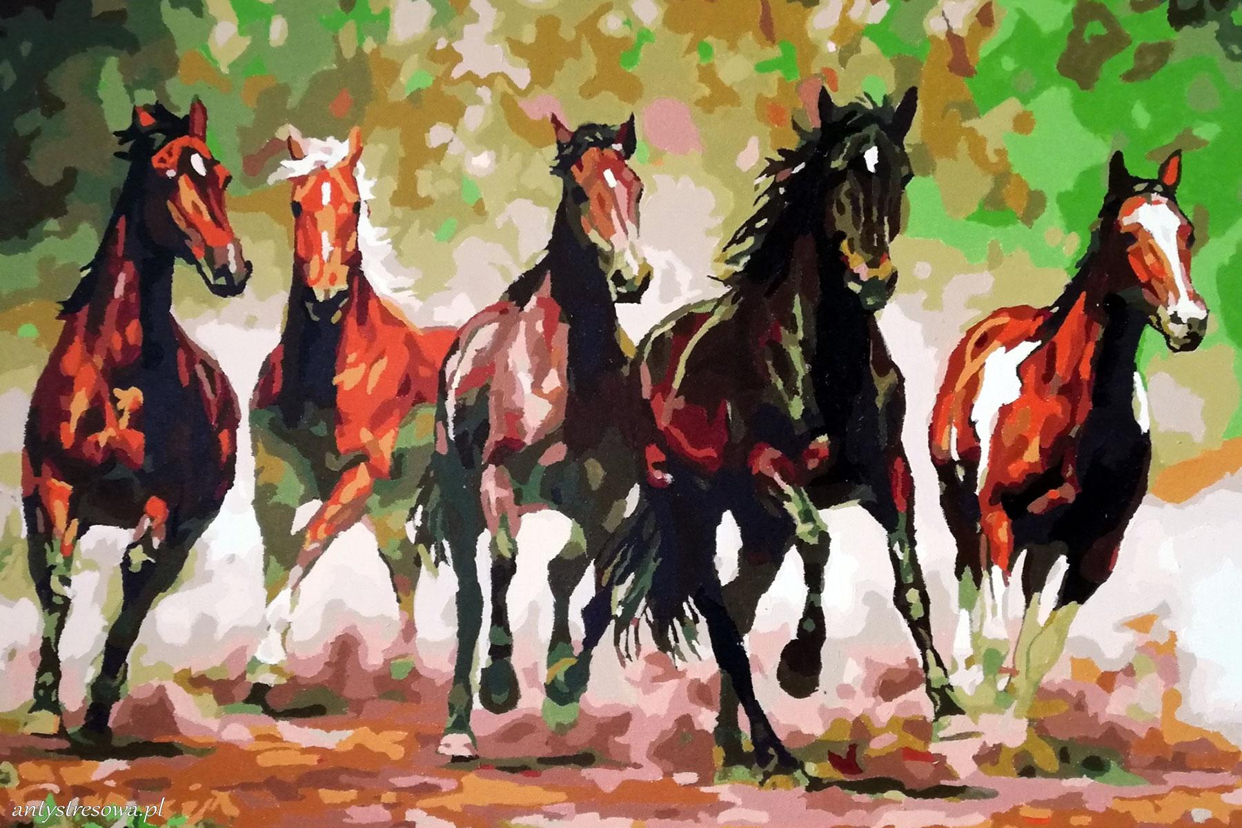 Konie w kanionie - malowanie po numerach