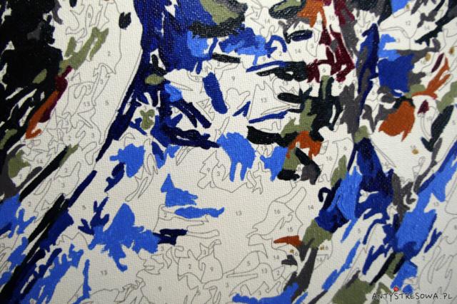 Niebieska sowa - pola z numerami na obrazie