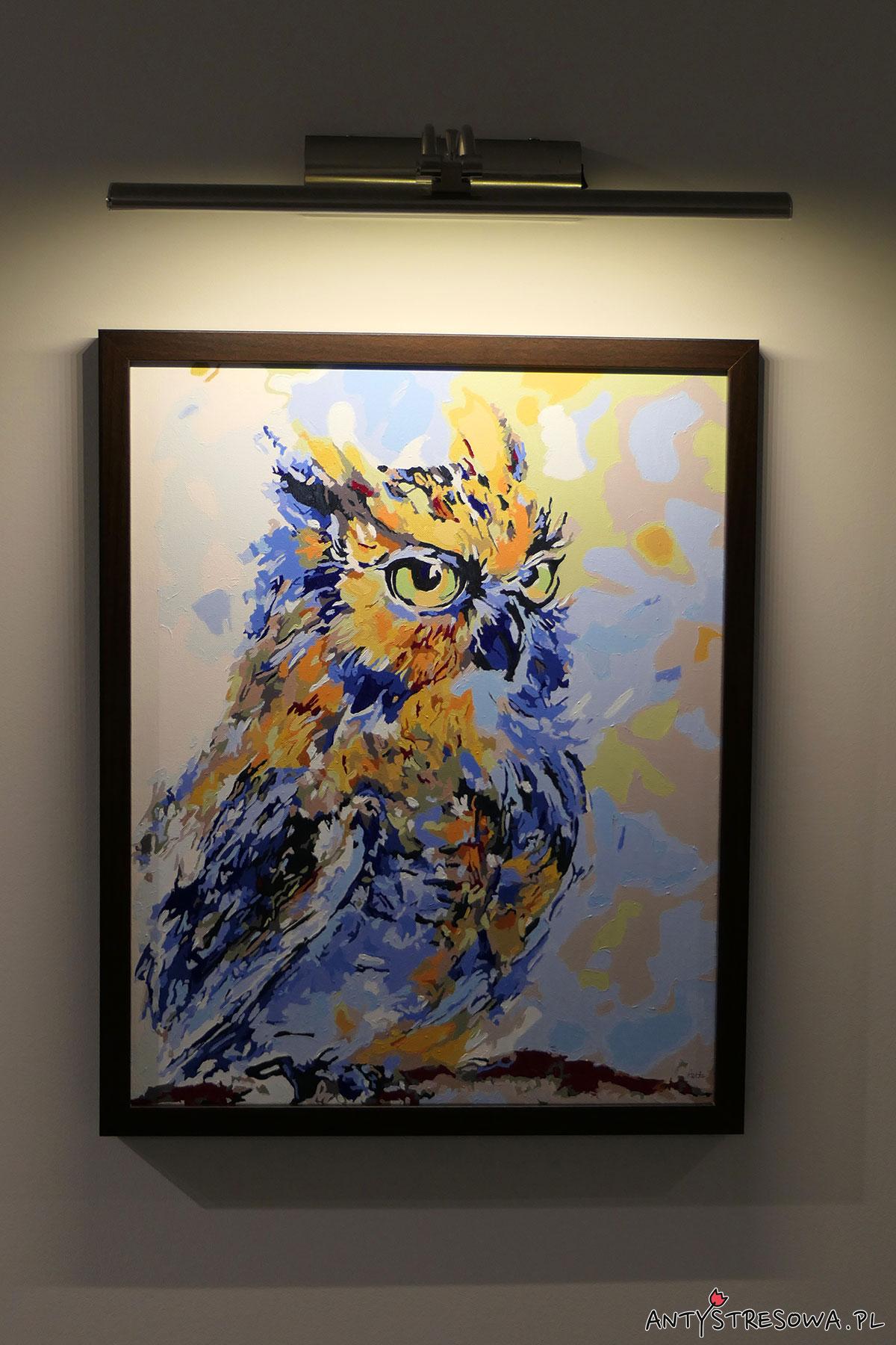 Niebieska sowa - malowanie po numerach