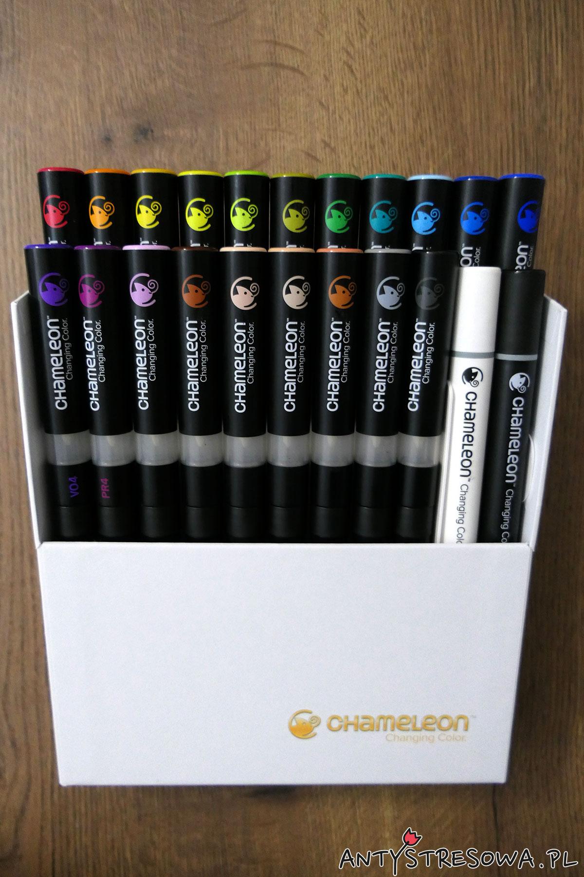 Chameleon Changing Color markery