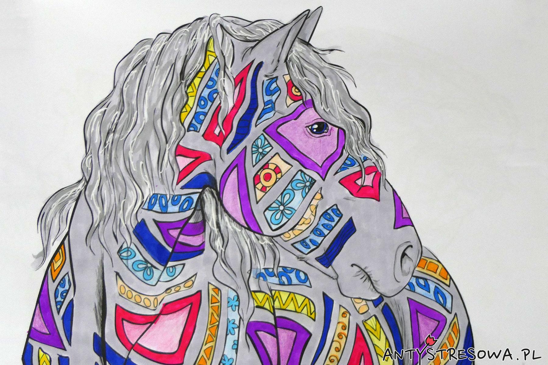 Obrazek z kolorowanki Amazing World Of Horses wykonany pisakami Art & Graphic oraz kredkami Koh-I-Noor