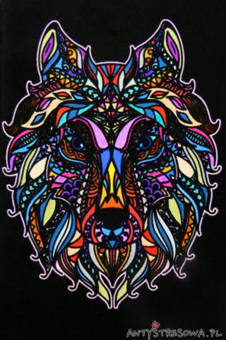 Wilk - welurowa kolorowanka