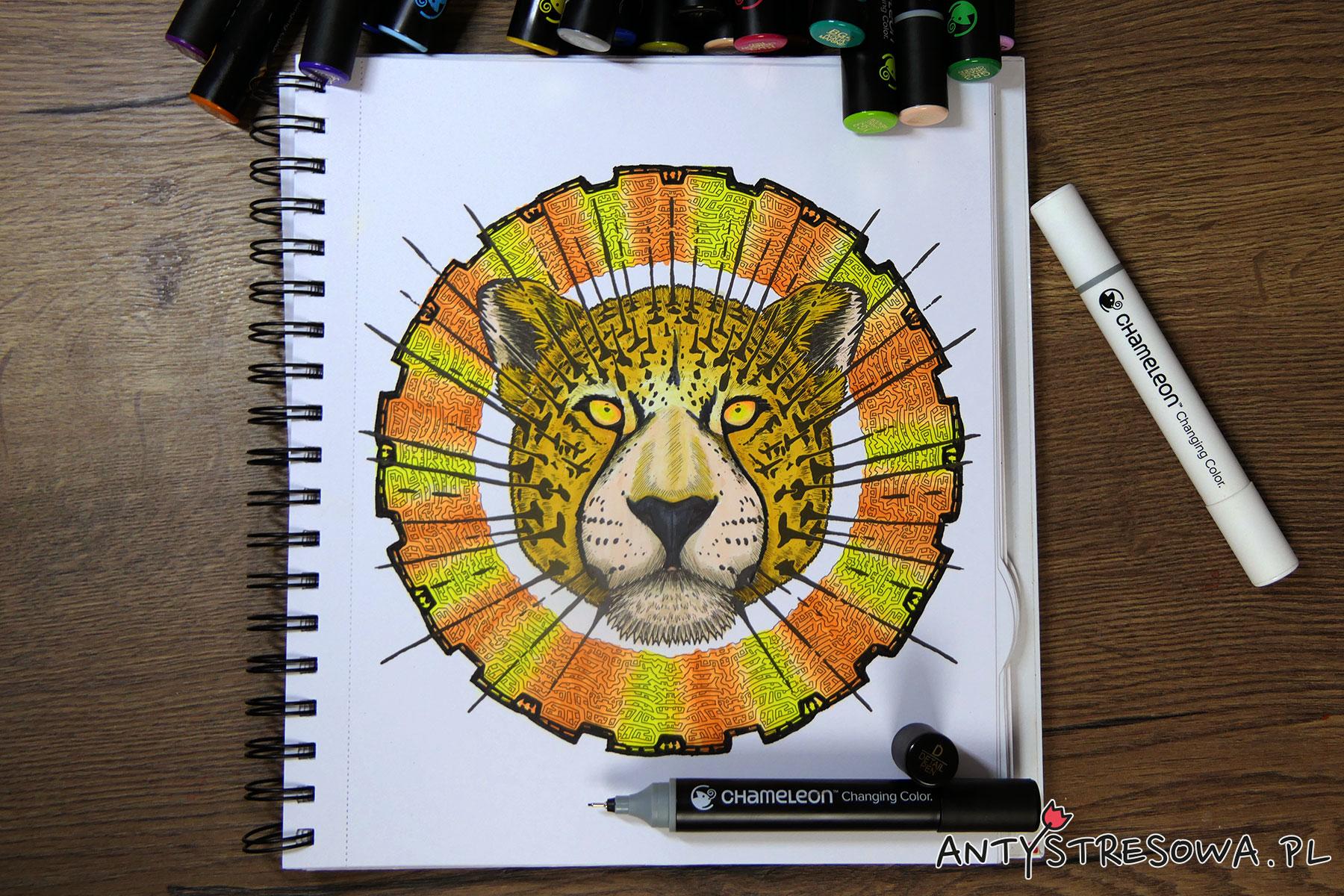 Mandalas Gone Wild  - kolorowanka do markerów