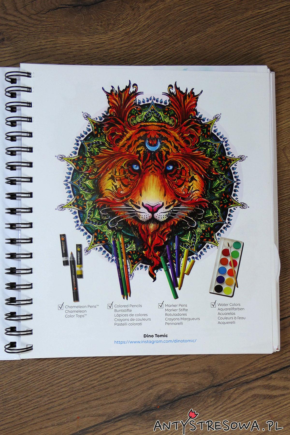 Mandalas Gone Wild - kolorowanka do markerów i nie tylo