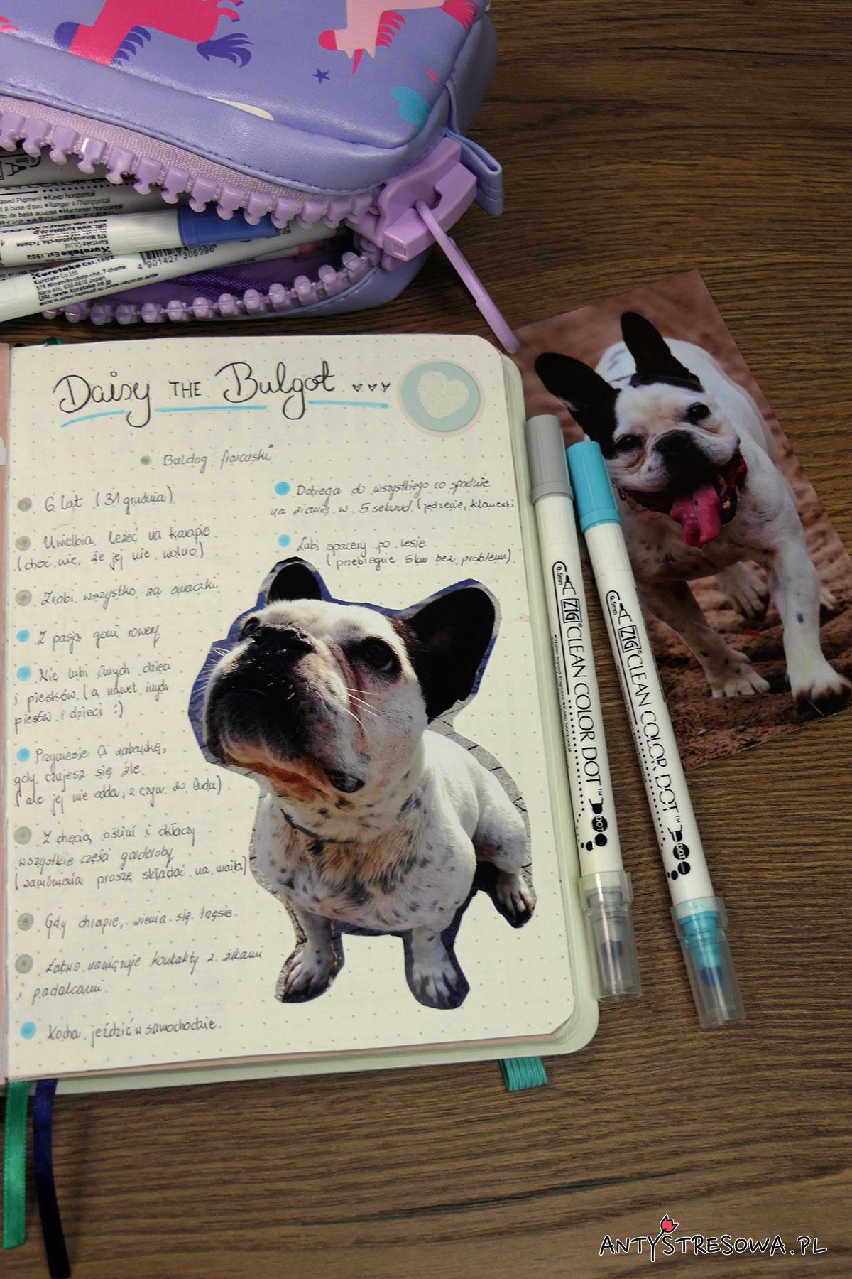 Strony w Bullet Journal poświęcone psom
