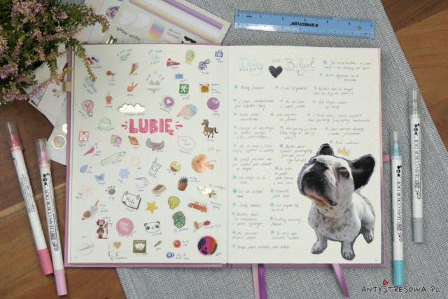 Bullet Journal - opis psa i moje zainteresowania