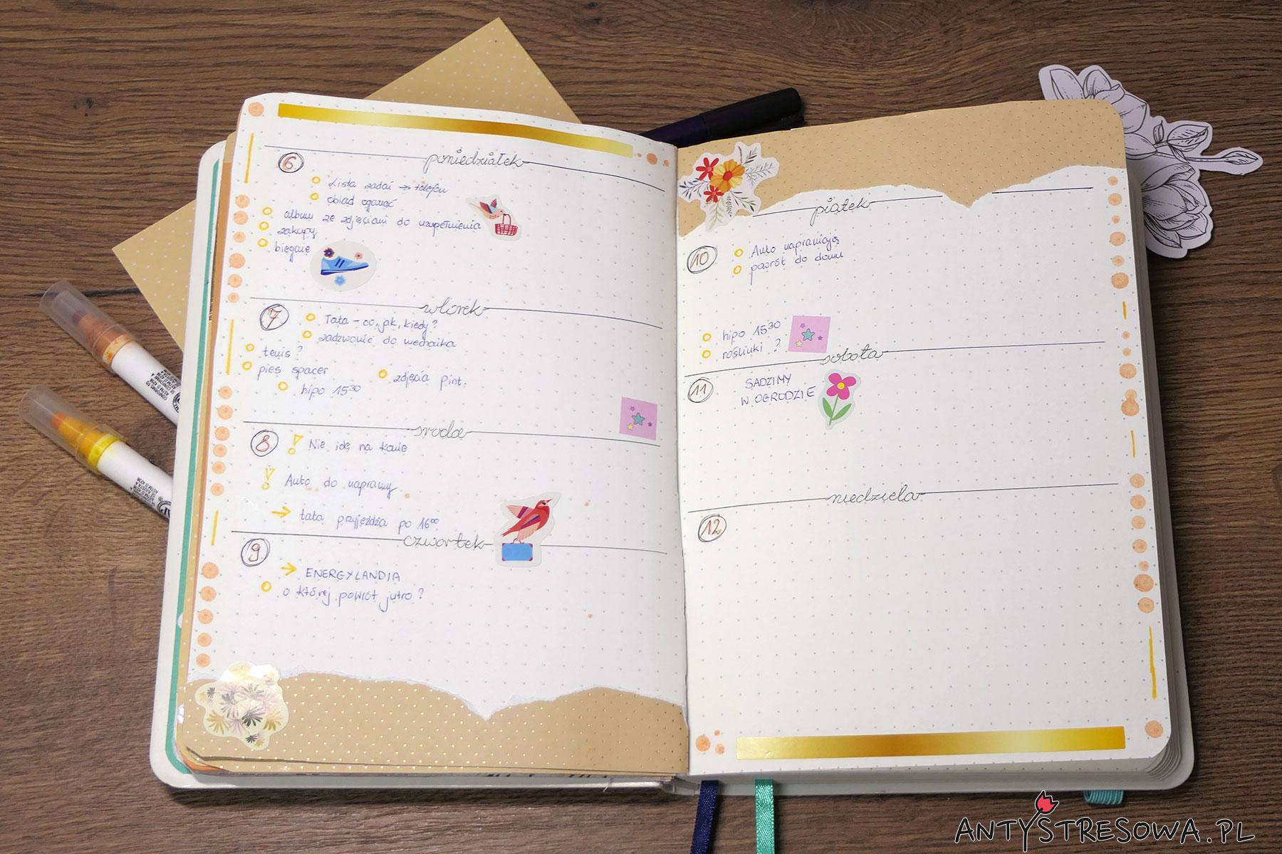 Plan tygodnia w Bullet Journal