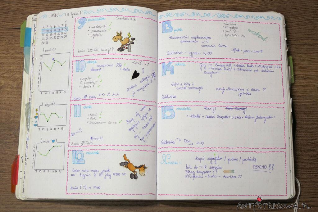 Plan tygodniowy w moim pierwszym Bullet Journal